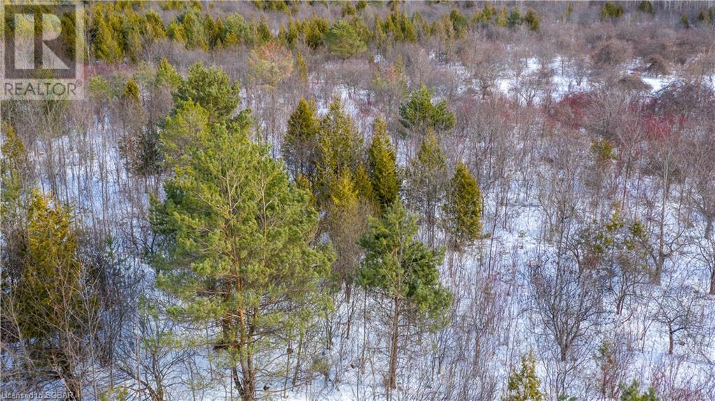 Lt 27 40 Grey Road, The Blue Mountains, Ontario  N0H 1J0 - Photo 11 - 242565