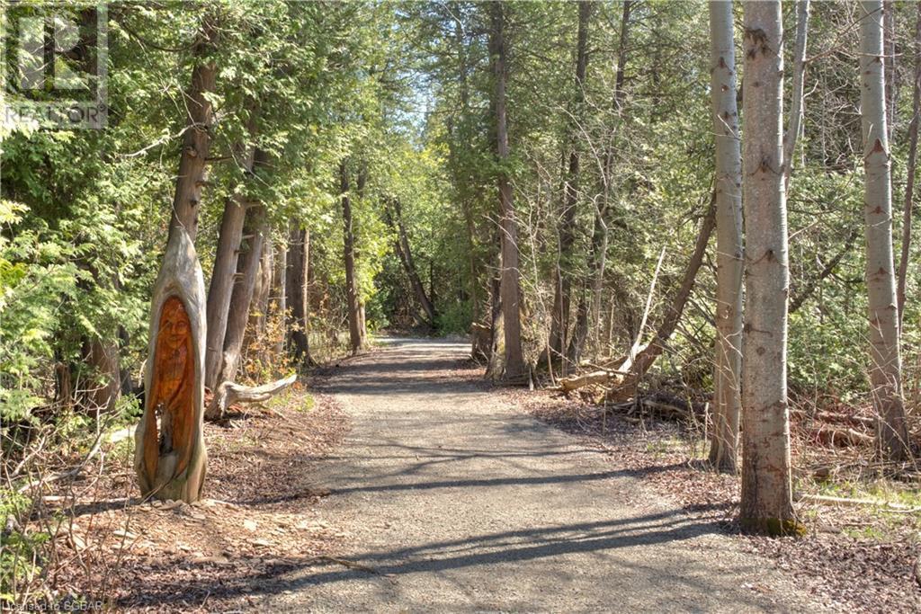 240 Ironwood Way, Kemble, Ontario  N0H 1S0 - Photo 50 - 260947